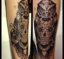 Owl-skull